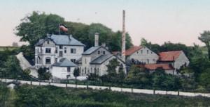 Koenigsborn1